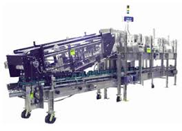 Continuous Motion Case Packer